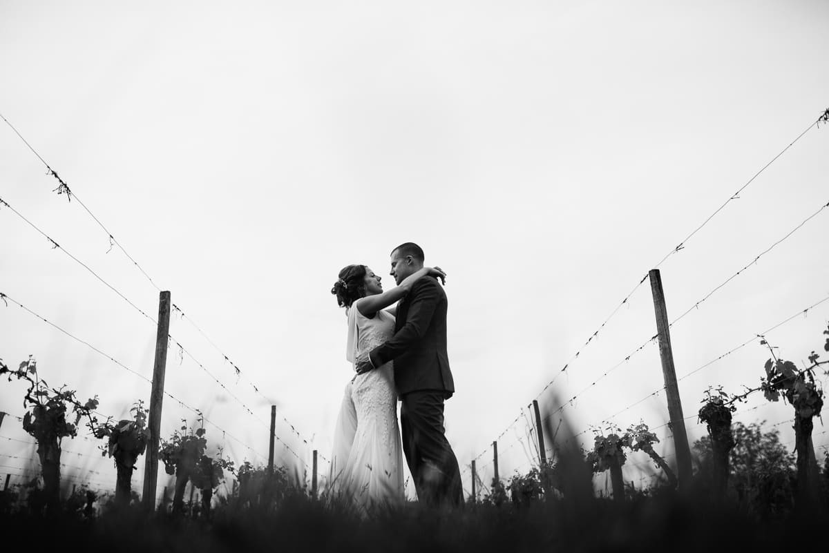 Bride and groom in vineyard on wedding day