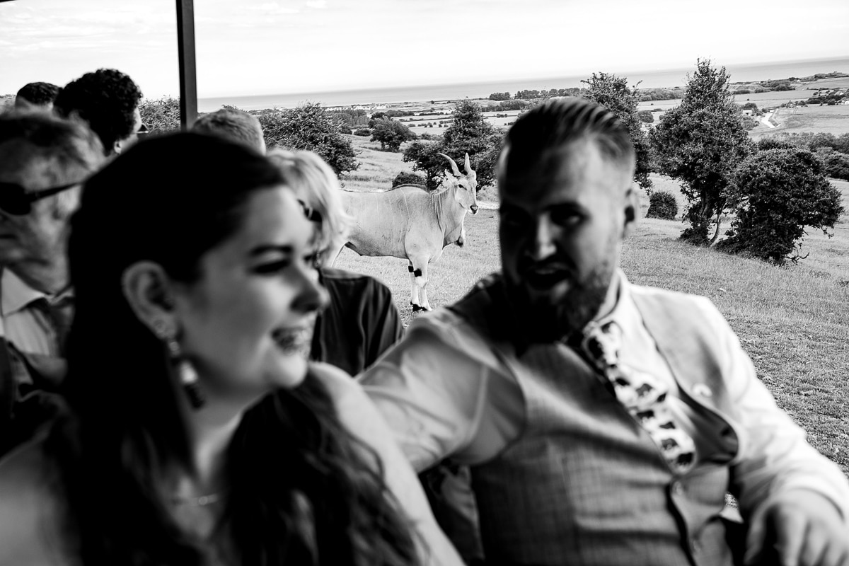 121Port Lympne Hotel Reserve Wedding Photos