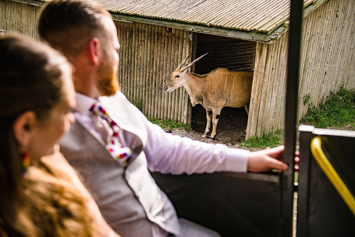 66Port Lympne Hotel Reserve Wedding Photos