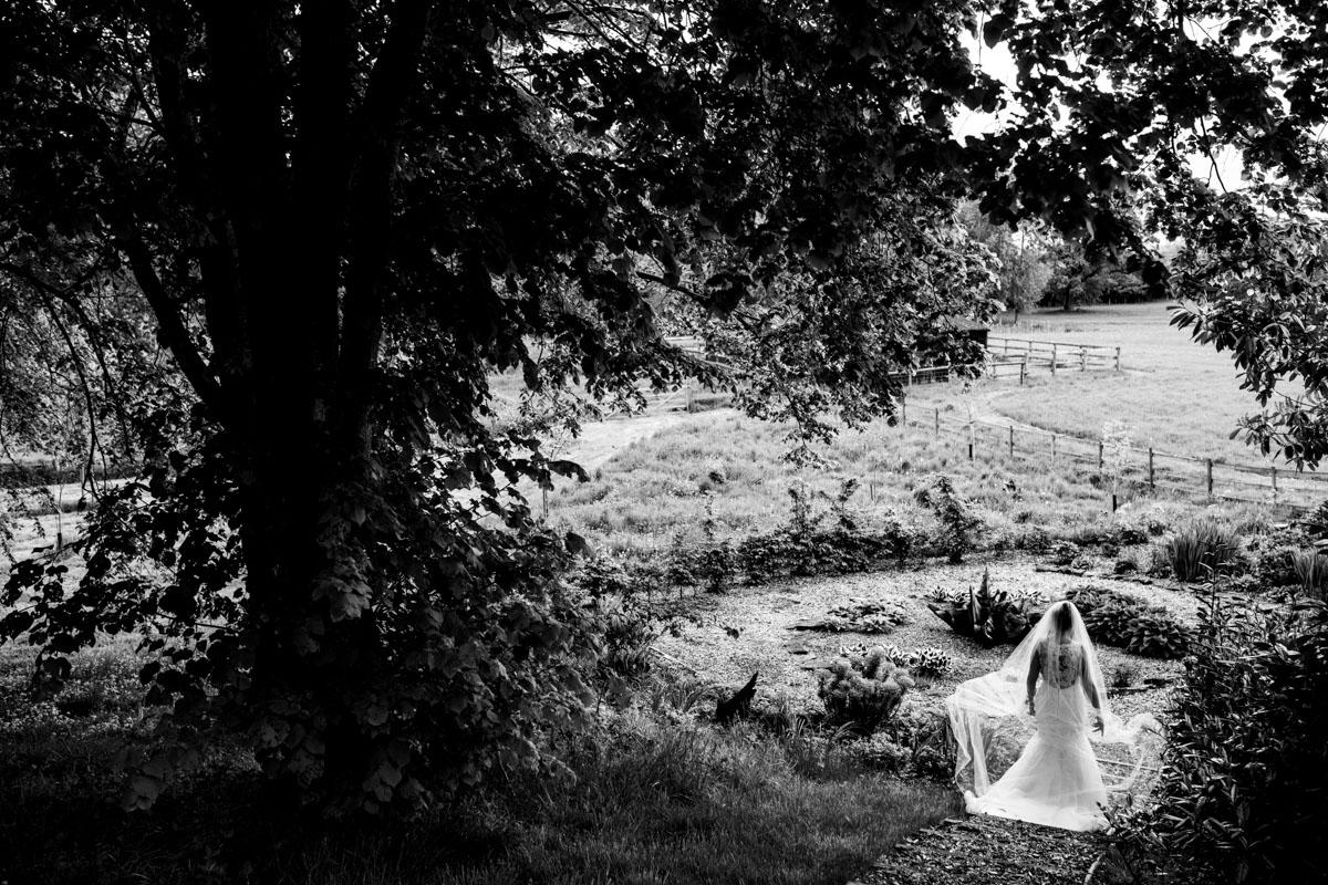 103Best documentary wedding photos