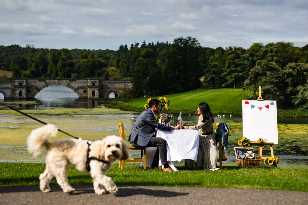 Blenheim palace surprise proposal picnic